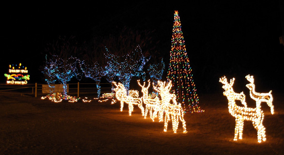 Christmas Lights In Belton Tx | My Blog